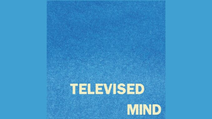 fontaines-dc-televised-mind
